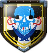 BigD91's shield